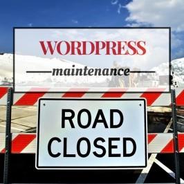 Recommended WordPress Website Maintenance
